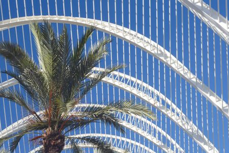 Leaves of a palm tree on a background of white metal construction and blue sky. Banque d'images
