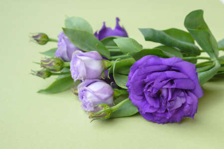Beautiful bouquet of purple flowers on a green background. Flower arrangement for your beloved.