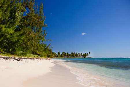 Seascape turquoise ocean and sandy coast against the blue sky. Rest by the sea. Exotic island. Travel to Dominicana.