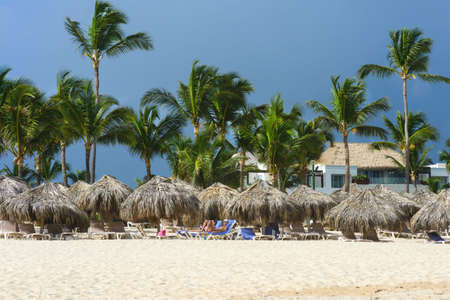 Dominican Republic, Punta Cana, December 2018. Sandy beach of Punta Cana resort. Palm trees and sunbeds against the blue sky. Paradise Island. to Dominican Republic. Reklamní fotografie