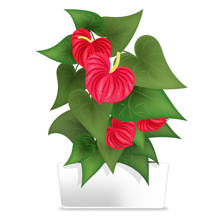 Spotted plant in the white pot. Element of home decor. The symbol of growth and ecology. Vector illustration. Eps 10
