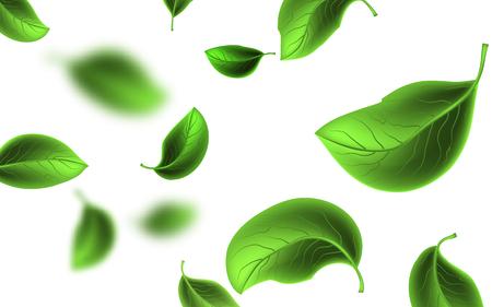 Wazig vliegende groene bladeren. Vector illustratie