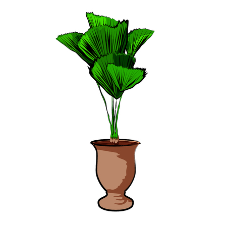 Palm in a clay pot. Element of home decor. The symbol of growth and ecology. Vector illustration.
