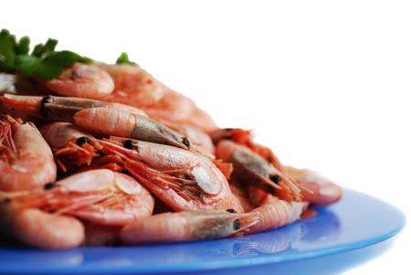 prepared shrimp: Prepared shrimp on plate