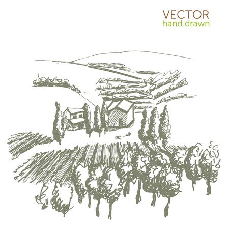 Landscape with vineyard, vintage pattern, Beaujolais Nouveau vector