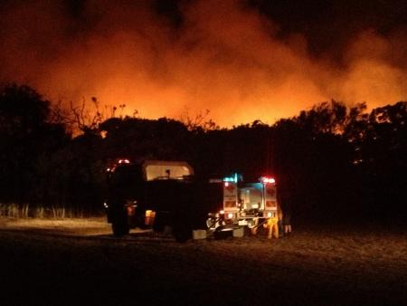 bush fire: Bush fire Stock Photo