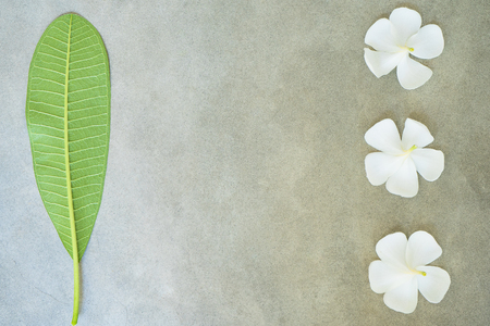 Concept composition of spa treatment, close up of white plumeria or frangipani flowers on stone background with copy space. Stock Photo