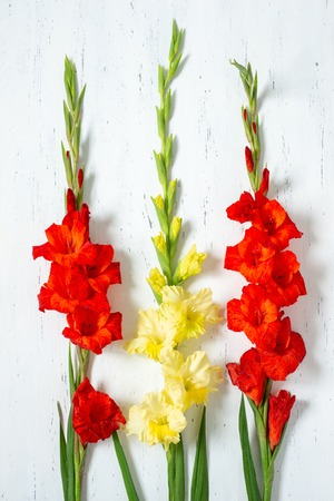 Bouquet of fresh yellow and orange gladiolus flowers close-up on white wooden background with copy space Stock fotó