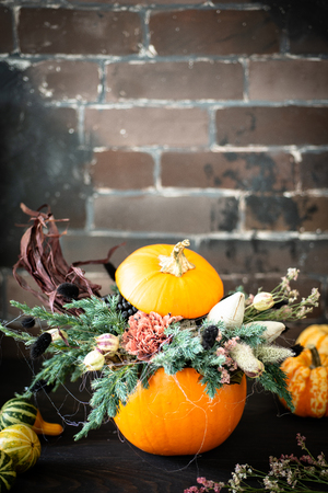 Halloween or Thanksgiving background with copy space. Autumn composition in pumpkin with cobweb, corn, carnation flower.