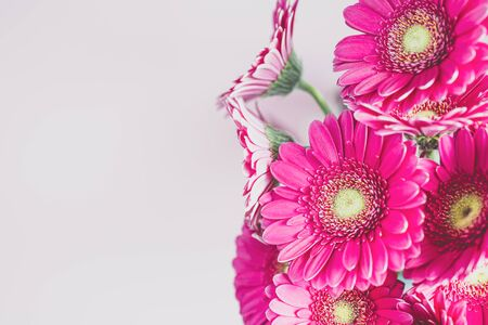 Bouquet of gerbera flowers on light pink background with copy space.