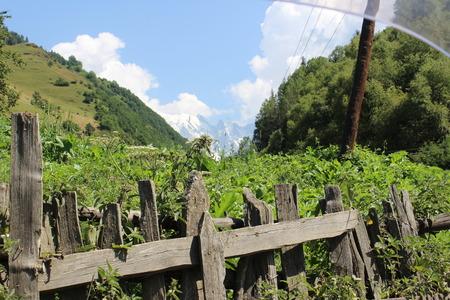 Sneeuwbergpieken en grote bossen op de achtergrond van een groene tuin met een houten oude en gebroken omheining