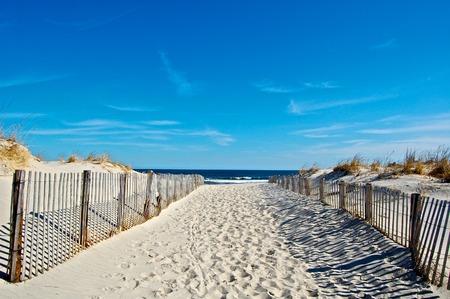 Sunny Seaside Beach