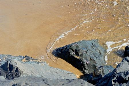 shore: Sandy Shore