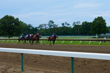 Horses Racing to the Finish Line
