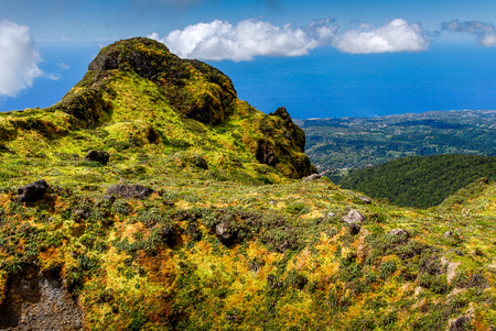Multicolored vegetation at the summit of the Soufriere volcano on the island of Guadeloupe in the French West Indies