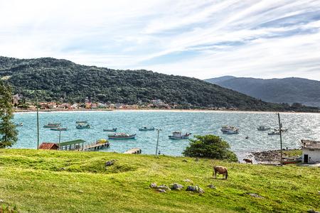 Beautiful landscape in Florianopolis, Santa Catarina, Brazil. 版權商用圖片