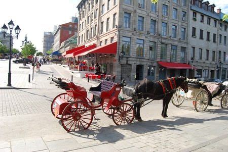 Horse Carriage in Montreal, Canada  photo