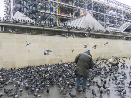 feed the poor: Man and pigeons, Paris, France, 2012