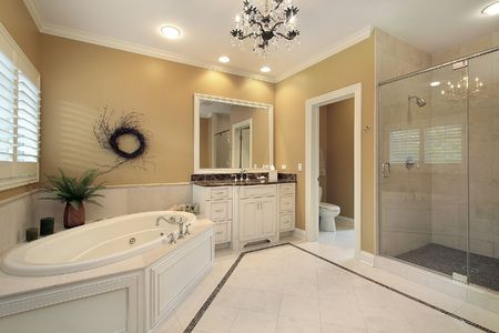 Large master bath with tub and glass shower