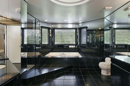 master bath: Master bath in luxury home with black step up bath