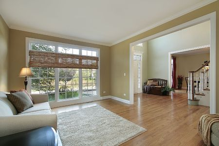 Living room in luxury home with foyer view photo