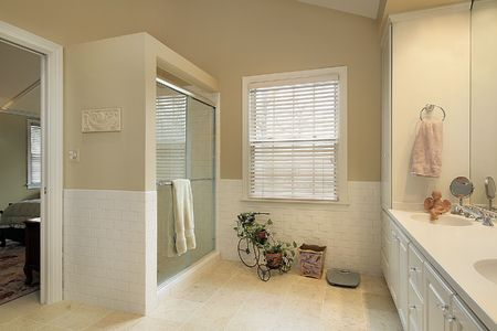 Master bath in suburban home with gold walls Stock Photo - 6738469