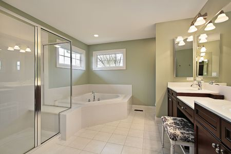 Master bath in new construction home with glass shower Stock Photo - 6738998