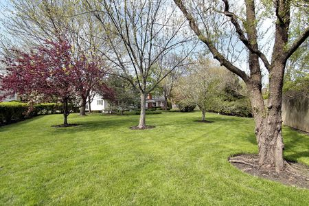 Back yard of luxury home in spring Stock Photo - 6739916