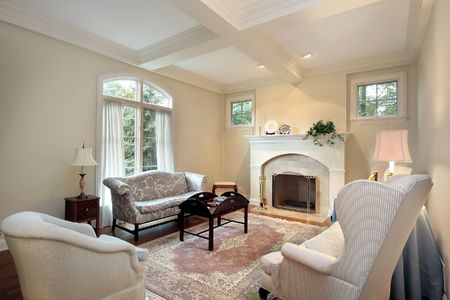 Living room in luxury home with fireplace Stock Photo - 6739697