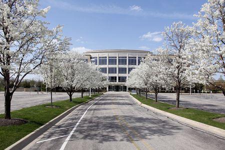 paesaggio industriale: Office building con alberi fioriti in primavera