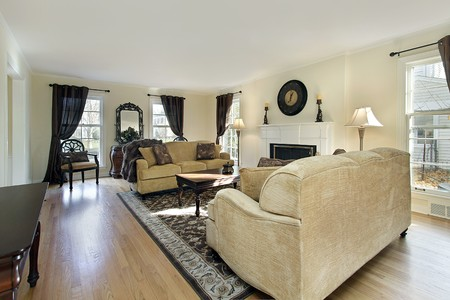 Living room in remodeled home with fireplace Stock Photo - 7750883
