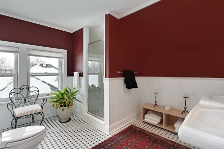 Bathroom with red walls and white siding photo