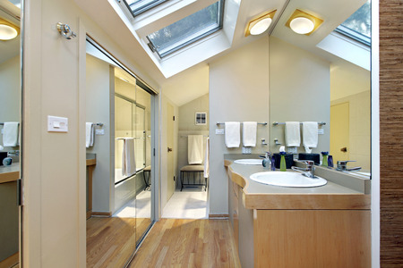 master bath: Master bath in suburban home with skylights