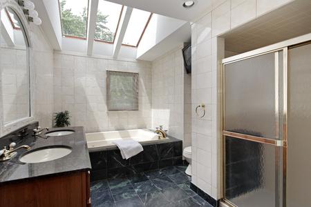 furnishings: Master bath in suburban home with skylights above bathtub.