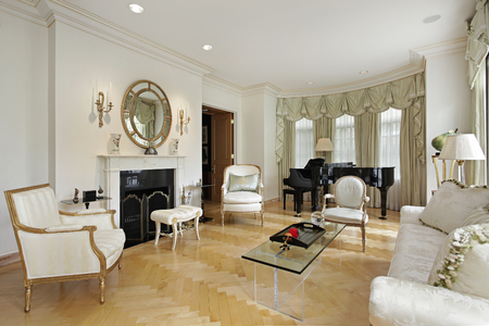 Living room in luxury home with fireplace.