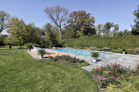 Swiming pool in back yard of luxury home with chaise lounge chairs