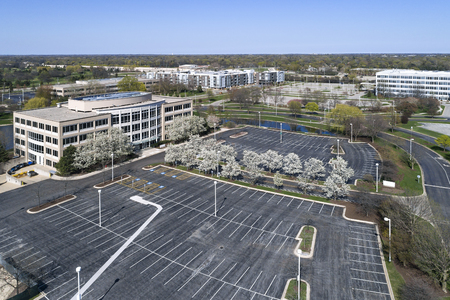 Office park during spring with flowering trees.