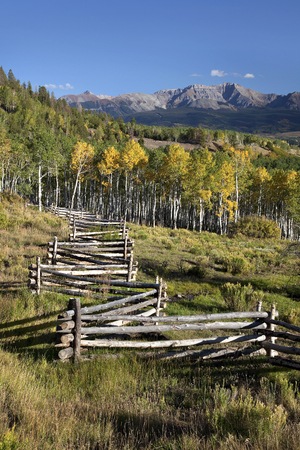 Fall scenic of mountains, golden aspens and rail fence on Last Dollar Road near Telluride, Colorado