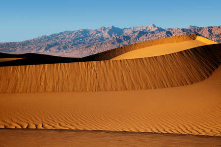 Rippling dunes in late afternoon sunlight at Mesquite Dunes in Death Valley National Park