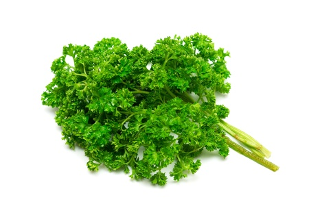 bunch up: Fresh green curly parsley isolated on white