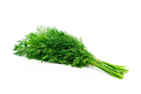 Fresh green dill isolated on white  photo