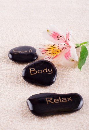Spa series, zen stones Stock Photo - 11681030