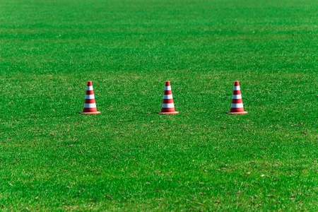Green grass and prohibiting cones  photo
