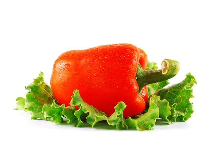 capsicums: One bell peppers on lettuce