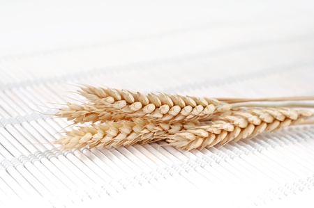 food industry: Ears of wheat
