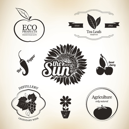Agriculture, wine and food design elements Vector
