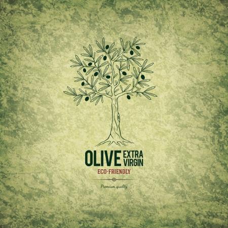 hoja de olivo: Dise�o de la etiqueta de Oliva
