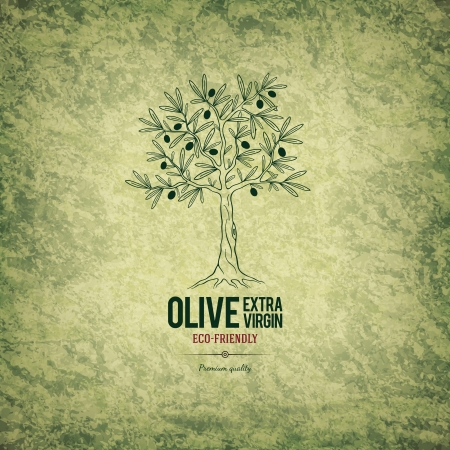 green bottle: Olive label design Illustration
