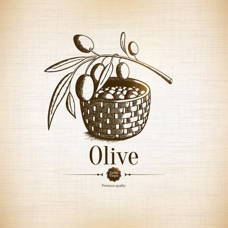 aceite de oliva virgen extra: Icono del olivo Vectores