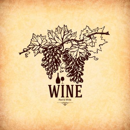 map wine: Wine list design. With hand drawn grape